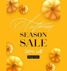 design banner autumn sale fall poster design with vector image
