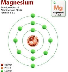magnesium atom vector image