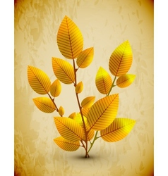 Autumn tree concept vector image