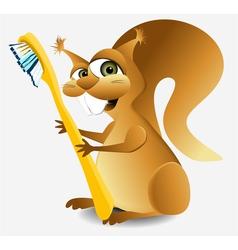 Dental squirrel vector