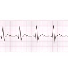 Heart beat Cardiogram Cardiac cycle vector