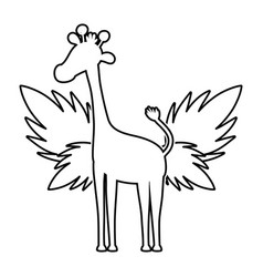 Line silhouette giraffe with exotic leaves reserve vector