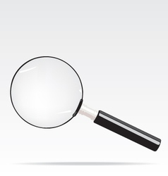 Magnifying vector