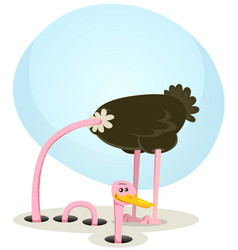 Ostrich hiding and looking from hole vector
