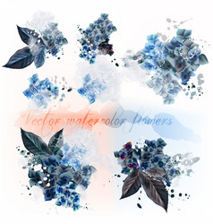 Set detailed flowers imitation watercolor vector