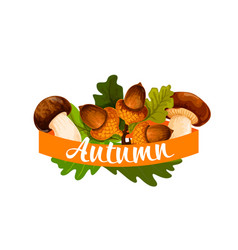 autumn harvest and leaf fall poster vector image