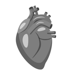 Human heart icon gray monochrome style vector