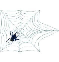 Spiderweb with spider vector