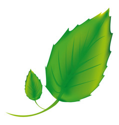 sticker green leaves icon vector image