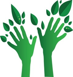 Green Hands01 resize vector image