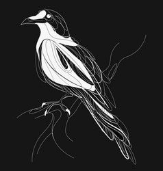 A crow sitting on a branch stylized magpie on a vector