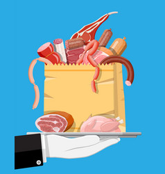 collection meat in tray vector image