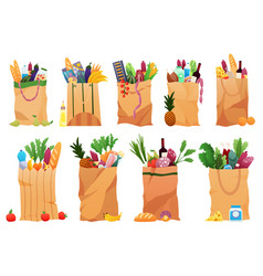 collection paper shopping bags products grocery vector image