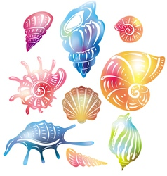 Colored seashell vector