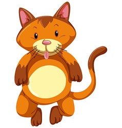 Cute cat with brown fur vector image