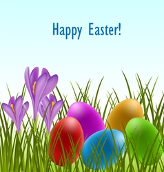 easter card with crocus and eggs vector image