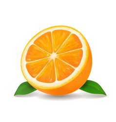 Half of orange icon vector