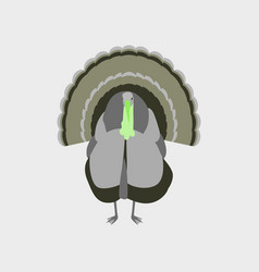 In flat style of turkey vector