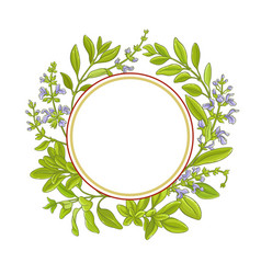 Sage branch frame vector