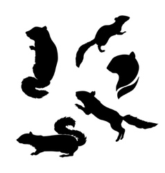 Silhouettes of a chipmunk vector