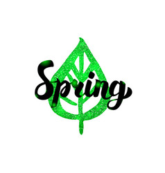 spring green inscription vector image