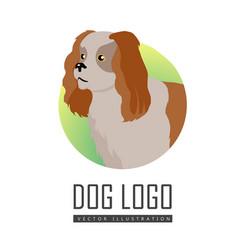 spaniel dog logo on white background vector image