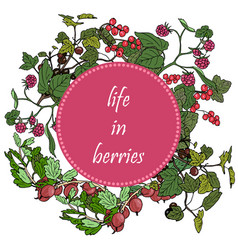 set of garden berries and green twigs in circle vector image