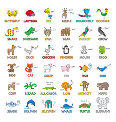 cartoon animals for children education vector image