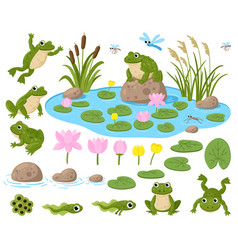 Cartoon frogs cute amphibian mascots frogspawn vector