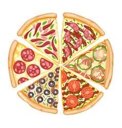 color pizza top view savoury pizza ads with 3d vector image