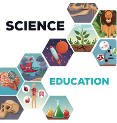 Cover page science and education with icons world vector