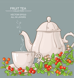 Cup of cranberry tea and teapot vector
