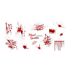 set various blood or paint splatters isolated vector image