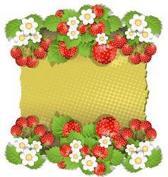 background with strawberry vector image