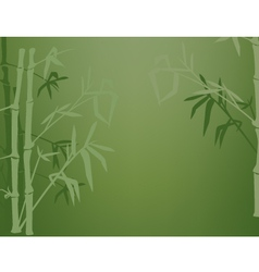 bamboo shadows vector image