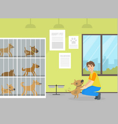 animal shelter with dogs in cages male volunteer vector image