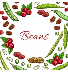Beans nuts and seeds poster vector