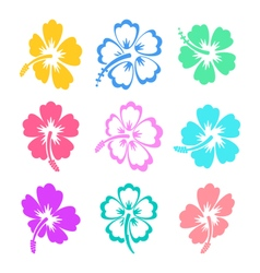 Colorful hibiscus icons vector image