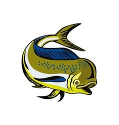 Dorado Dolphin Fsh Mahi-Mahi vector