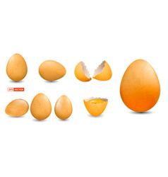 realistic grunge chicken eggs isolated vector image