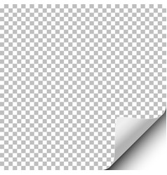 Transparent sheet of paper with curled lower vector
