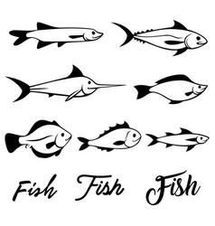 set fish vector image