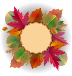 lace frame with autumn leaves vector image