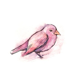hand drawn pink bird watercolor style vector image vector image