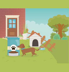 House garden dog with wooden home food bowl and vector