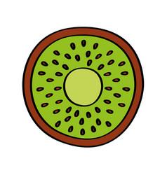 kiwi fresh fruit drawing icon vector image