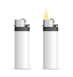 realistic blank lighter vector image
