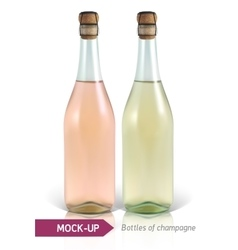 bottles of champagne vector image