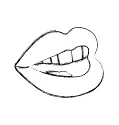 sexy woman lips vector image