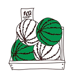 A truft of watermelons vector